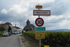 Montagne-de-Reims-Mai-2016-013