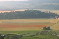 montagne-de-Reims-2010-003