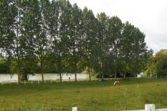 Pantin-Joigny-Juil-2016-025